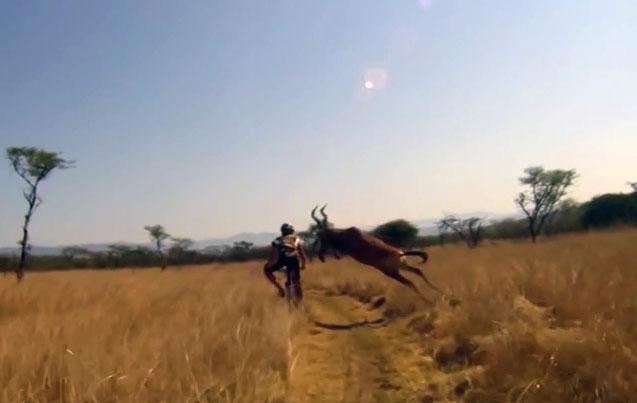 Evan Van der Spuy rentre dans une antilope à vélo