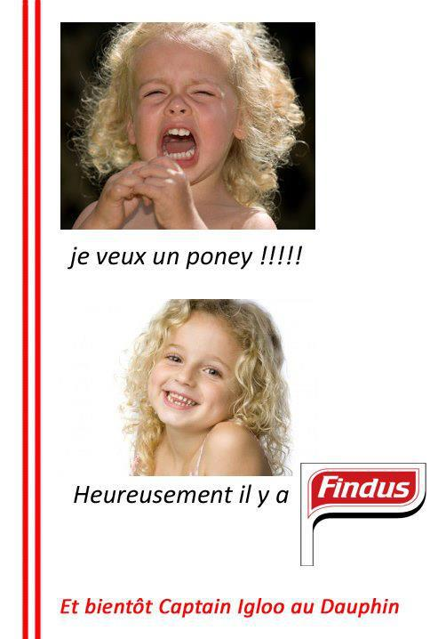 findus-poney.jpg