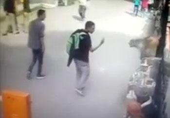 Un singe met à terre un homme qui lui a fait un doigt d'honneur