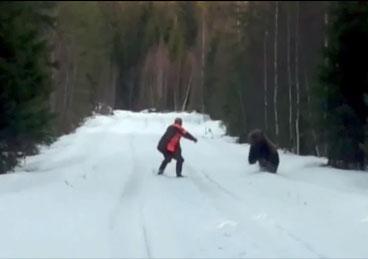 En Suède, un ours fonce droit sur lui pour l'attaquer