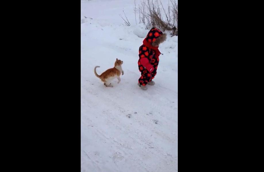 Un chat trolle une petite fille qui se ballade dans la neige