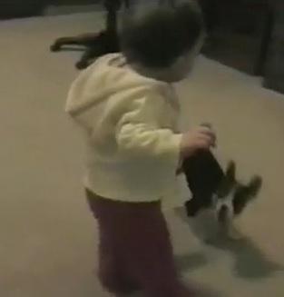 Un chien empêche un bébé de faire ses premiers pas