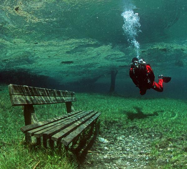 Grüner See : plongez dans un lac avec une eau claire
