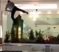 Alcoolisé, il plonge dans l'aquarium d'un hôtel
