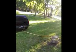 Fail: comment ne pas retirer une souche d'arbre avec un SUV