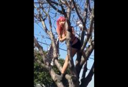 Une fille perchée dans un arbre insulte gratuitement une femme
