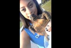 Elle pense sauver une tortue de terre en la mettant à l'eau