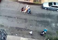 Deux pitbulls attaquent un homme dans la rue